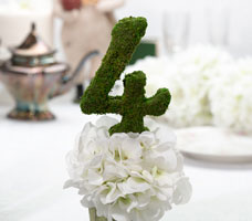 Moss Wedding Décor Table Numbers