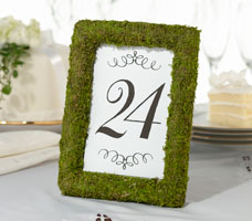 Moss 4x6 Picture Frame